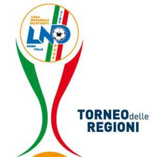 TDR Calcio a 11 in Calabria, prescelta l'area