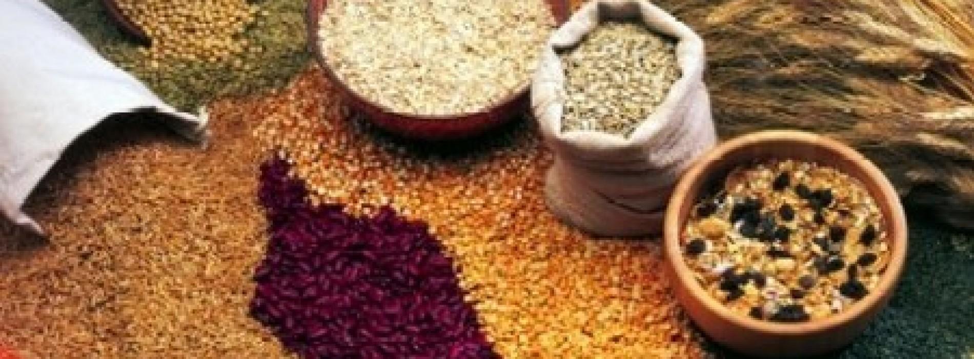 Cerealicultura: il benessere viene da lontano